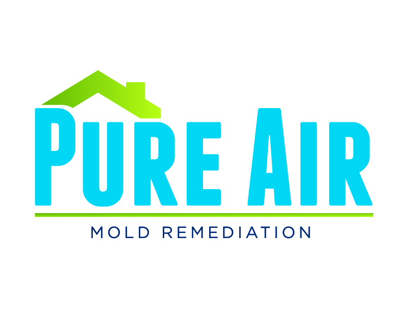Pure Air Mold Remediation