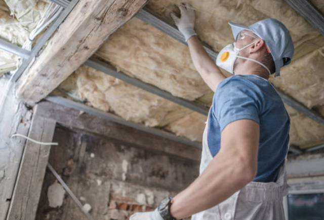 Is There Mold in Your Insulation?