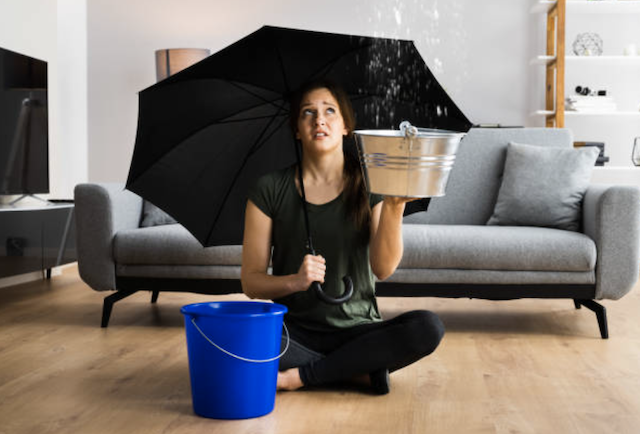 Why Ceiling Leaks Can Lead to Mold